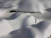 snow mounds in stream_2125-1