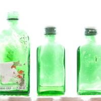 3 green bottles_8466