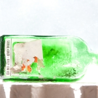 green bottle_horizontal_8505