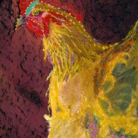 Pam White, Yellow Rooster