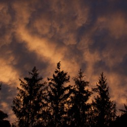 evening-sky-clouds7.13